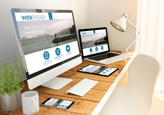 aminass web design