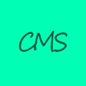 cms aminass web design
