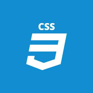 css aminass web design