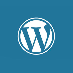 wordpress aminass web design